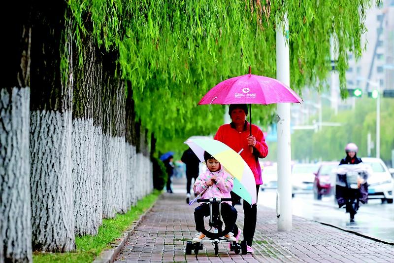 秋雨來襲添涼意