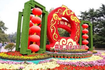 终于来啦!中山公园菊展本周六开展 展期20天左右