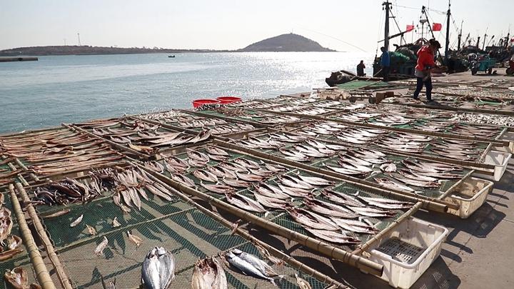 第397期 瑯琊鎮古法曬魚富漁民