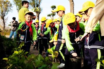 探秘植物世界 学习自然知识
