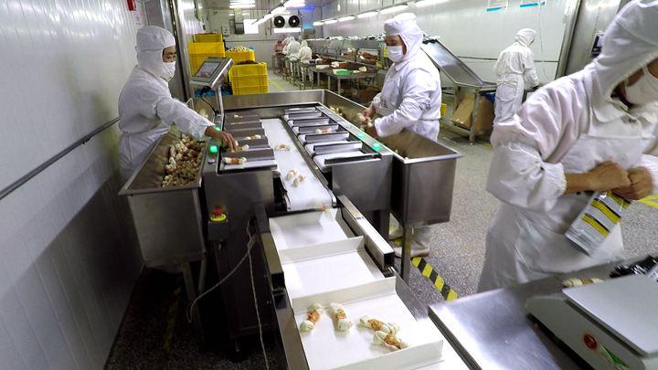 第411期 揭秘区内宠物食品生产全过程