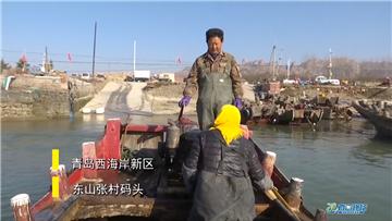 第420期 海蛎子养殖大揭秘