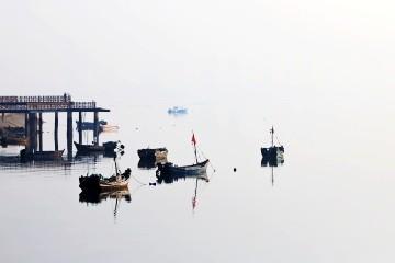 水墨唐島灣