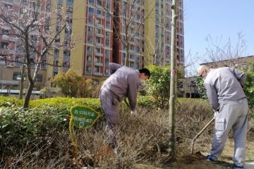 珠海街道:携手渡疫情 物业在行动