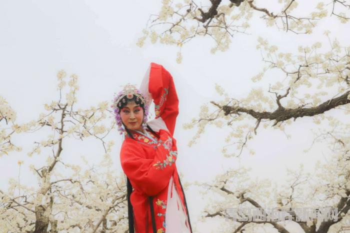 第二届桃花源艺术节在青岛西海岸新区开幕