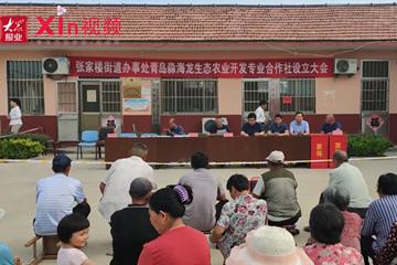 Xin视频 | 村民土地入股成立合作社