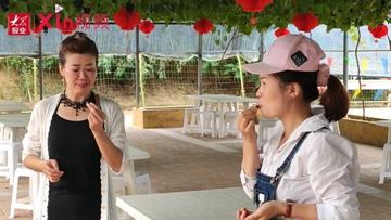 Xin视频|逛吃六汪:七八个品种葡萄随手摘