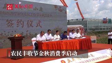 Xin视频|西海岸新区农民丰收节金秋消费季开幕