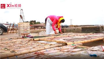 Xin视频|沿海渔民晒鱼忙