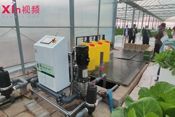 Xin视频|气雾栽培技术在大村镇生根发芽