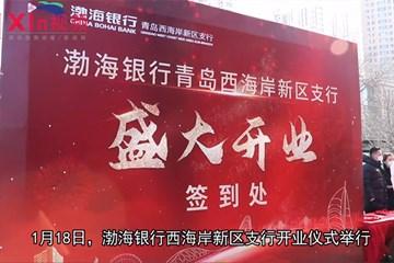 Xin视频|西海岸金融力量添新军