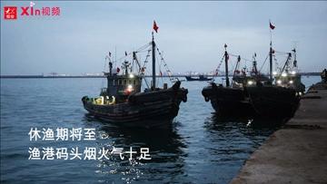 Xin视频|休渔期将至,渔港码头烟火气十足