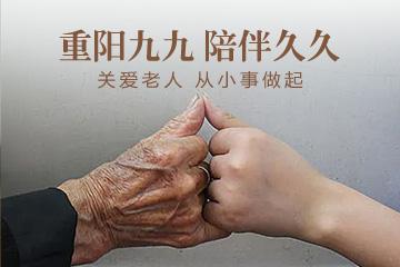 海报 九九重阳节