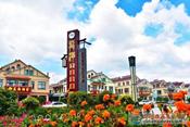 西海岸這個村莊入選2019年中國美麗休閑鄉村!