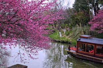 西溪湿地24日开园